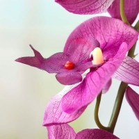 Purple Artificial Orchid Stem - Picks and Stems - Floral ...