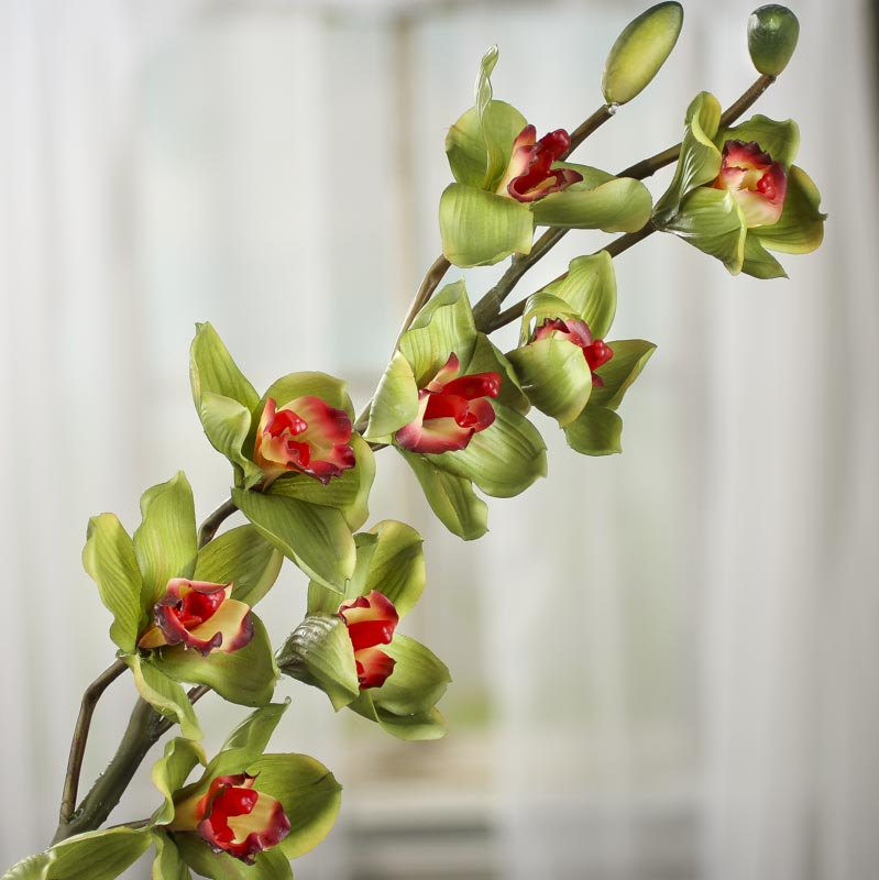 Green Artificial Cymbidium Orchid Stem  Picks and Stems