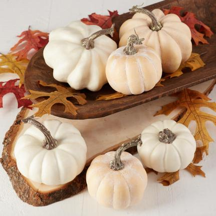 Assorted White Pumpkins