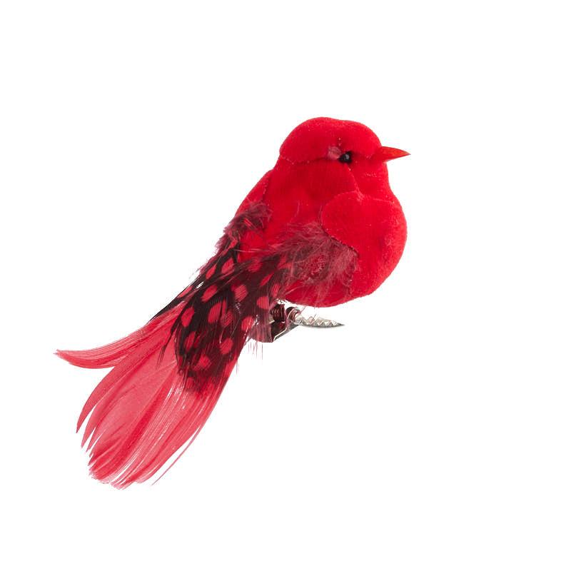 Fancy Red Velvet Mushroom Bird  Birds  Butterflies