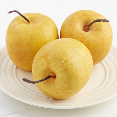 Photo 1 For - Realistic Artificial Apples