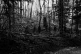 blackmetalwalpurgisnacht-0385