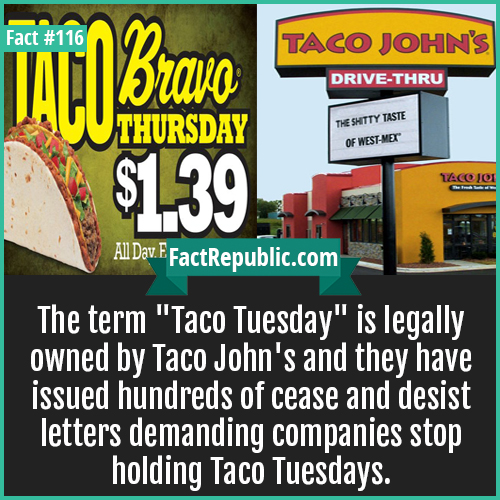 116-Taco-Tuesday-The term