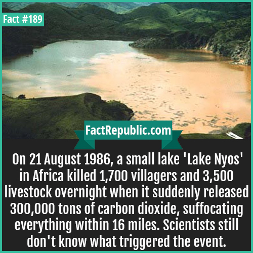 189-Killer lake nyos-On 21 August 1986, a small lake 'Lake Nyos' in Africa killed 1,700 villagers and 3,500 livestock overnight when it suddenly released 300,000 tons of carbon dioxide, suffocating everything within 16 miles. Scientists still don't know what triggered the event.