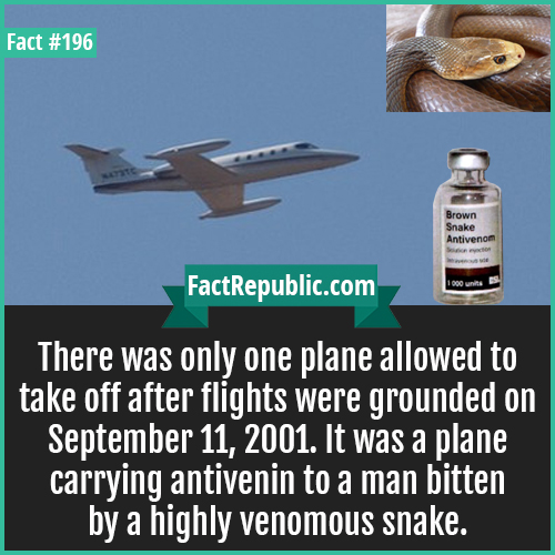 196. taipan venom 9 11-There was only one plane allowed to take off after flights were grounded on September 11, 2001. It was a plane carrying antivenin to a man bitten by a highly venomous snake.