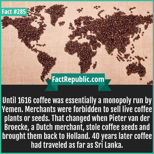 285. Coffee-Until 1616 coffee was essentially a monopoly run by Yemen. Merchants were forbidden to sell live coffee plants or seeds. That changed when Pieter van der Broecke, a Dutch merchant, stole coffee seeds and brought them back to Holland. 40 years later coffee had traveled as far as Sri Lanka.