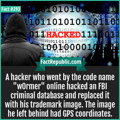 293-Hacker-A hacker who went by the code name