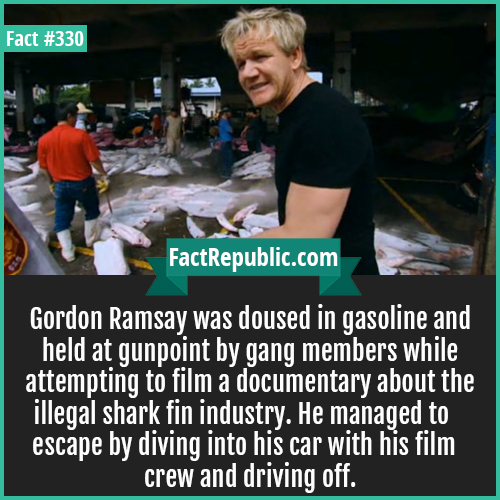 330. Ramsay-Gordon Ramsay was doused in gasoline and held at gunpoint by gang members while attempting to film a documentary about the illegal shark fin industry. He managed to escape by diving into his car with his film crew and driving off.