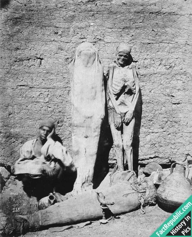 54-selling-mummies