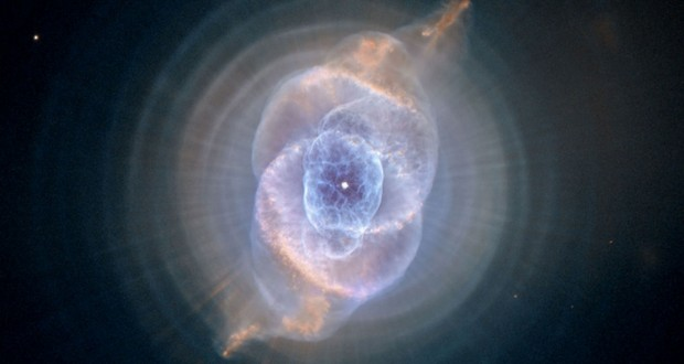 One-electron universe