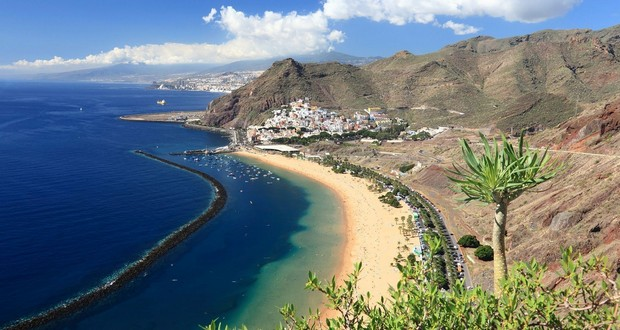 Dog Canary Islands Named After