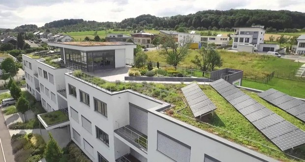 Green rooftops or solar panels