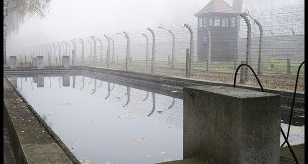 Auschwitz pool