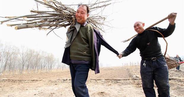 Jia Haixia and Jia Wenqi