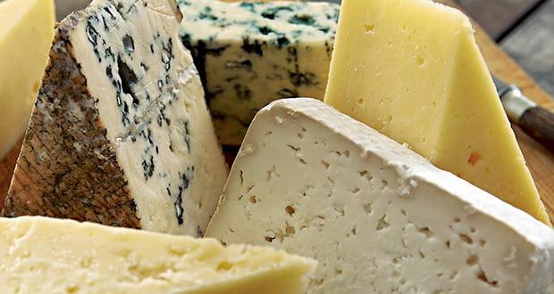 Mammoth cheese