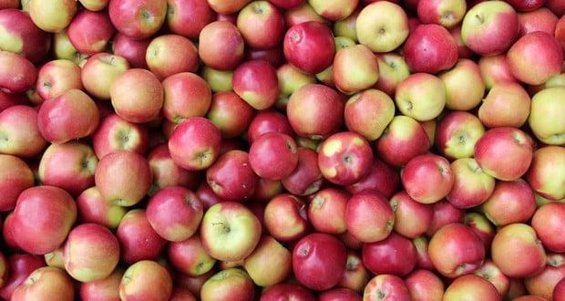 Spitter apples