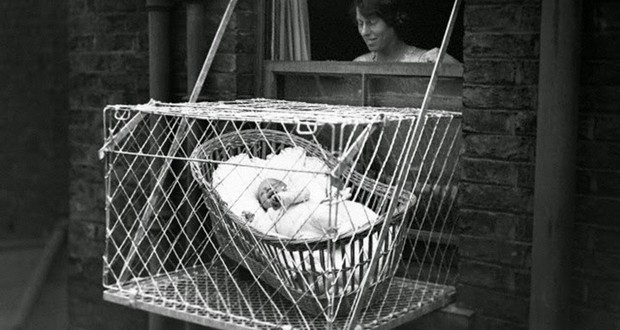 Baby Cages