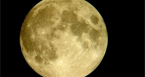 Moon Hay Fever