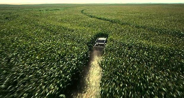 Interstellar corn field