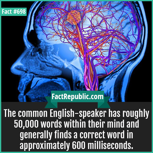 698. English speaker Brain-The common English-speaker has roughly 50,000 words within their mind and generally finds a correct word in approximately 600 milliseconds.