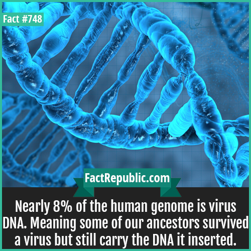 748. Human DNA Virus-Nearly 8% of the human genome is virus DNA. Meaning some of our ancestors survived a virus but still carry the DNA it inserted.