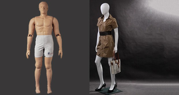 Mannequin and manikin