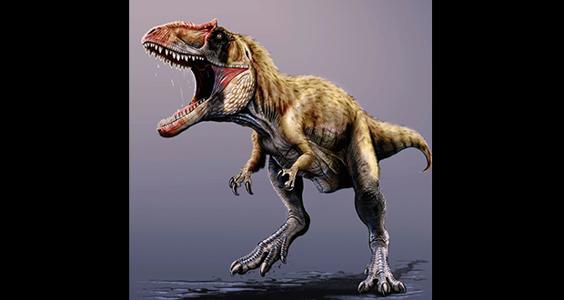Pygmy tyrannosaurus rex