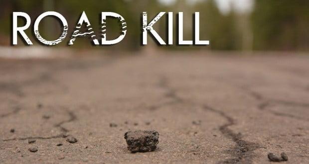 Roadkill rage experiment