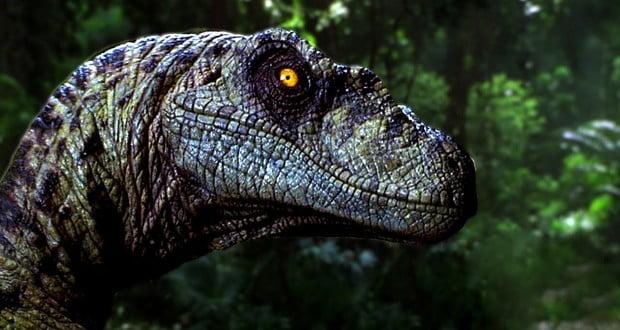 Velociraptor screech