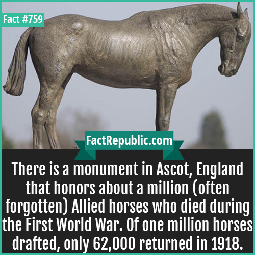 759. War Horse Memorial 1-There is a monument in Ascot, England that honors about a million (often forgotten) Allied horses who died during the First World War. Of one million horses drafted, only 62,000 returned in 1918.