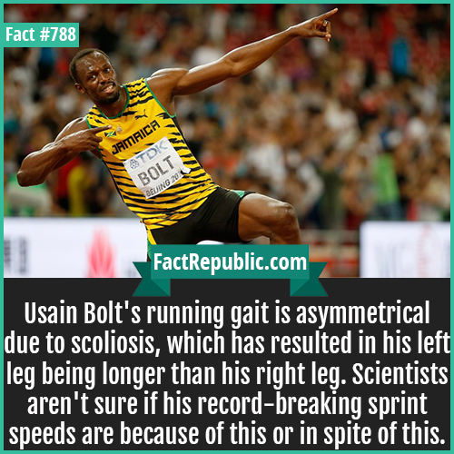 788. Usain Bolt-Usain Bolt's running gait is asymmetrical due to scoliosis, which has resulted in his left leg being longer than his right leg. Scientists aren't sure if his record-breaking sprint speeds are because of this or in spite of this.