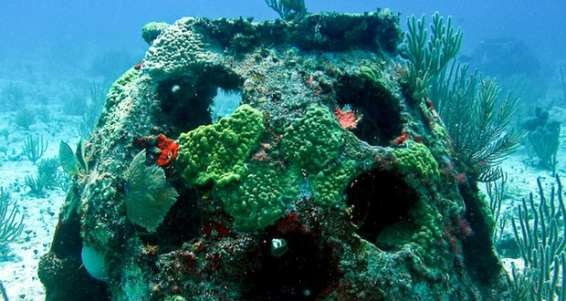 Eternal memorial reef