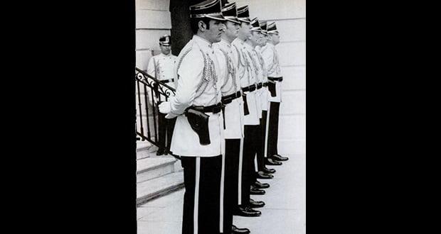 Nixon palace guard