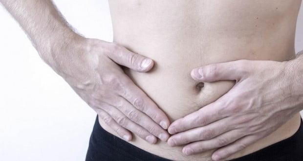 Appendix's Usefulness