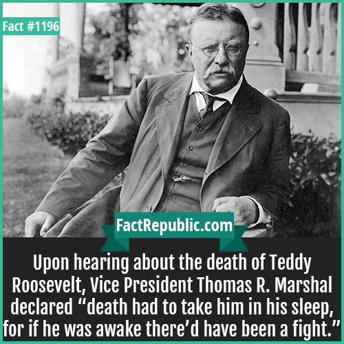 """1196. Teddy Roosevelt-Upon hearing about the death of Teddy Roosevelt, Vice President Thomas R. Marshal declared """"death had to take him in his sleep, for if he was awake there'd have been a fight."""""""