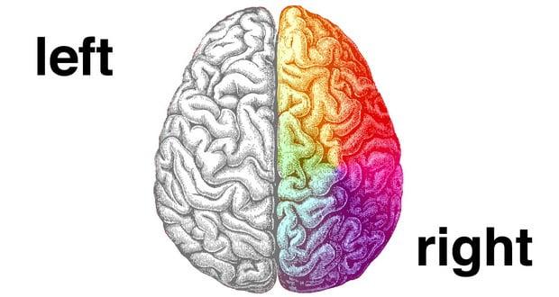 Left-brain vs. Right-brain dominance