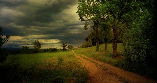 Odor before rain