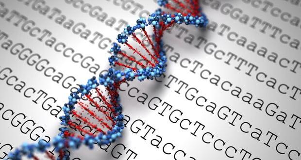 Viral Genome