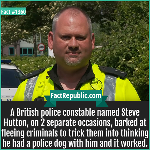 1360. Constable Steve Hutton-A British police constable named Steve Hutton, on 2 separate occasions, barked at fleeing criminals to trick them into thinking he had a police dog with him and it worked.