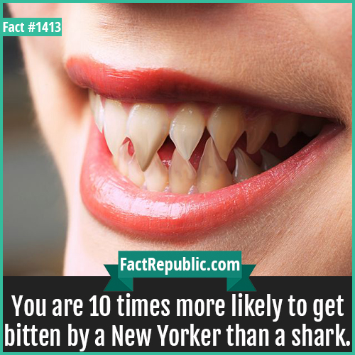 1413. New Yorker Teeth-You are 10 times more likely to get bitten by a New Yorker than a shark.