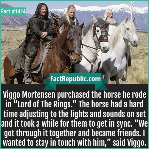 """1414. Viggo Mortensen Horse-Viggo Mortensen purchased the horse he rode in """"Lord of The Rings."""" The horse had a hard time adjusting to the lights and sounds on set and it took a while for them to get in sync. """"We got through it together and became friends. I wanted to stay in touch with him,"""" said Viggo."""