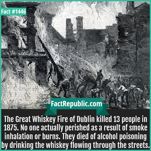 1446. Whiskey Fire of Dublin-The Great Whiskey Fire of Dublin killed 13 people in 1875. No one actually perished as a result of smoke inhalation or burns. They died of alcohol poisoning by drinking the whiskey flowing through the streets.