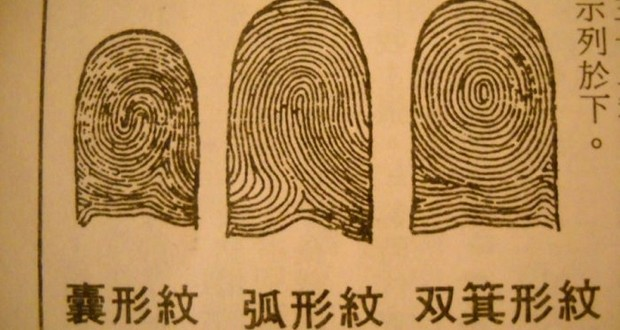 Qin Dynasty fingerprints