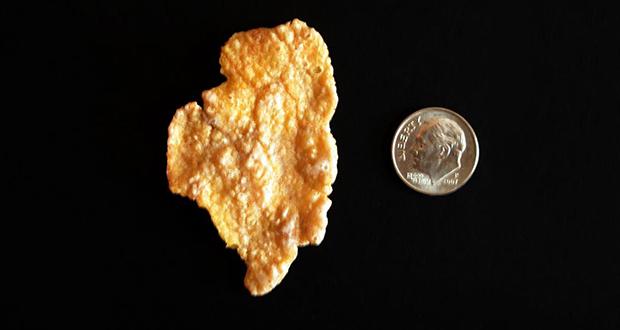 Cornflake Illinois