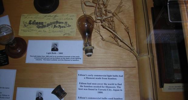 Bamboo filament bulb