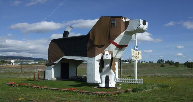 Sweet Willy Dog Bark Park Inn