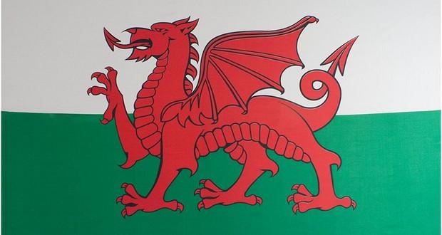 Dragon flags