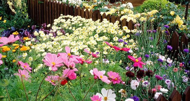 German garden in Belgium