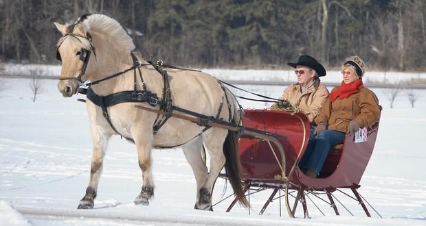 Horse-drawn sleigh