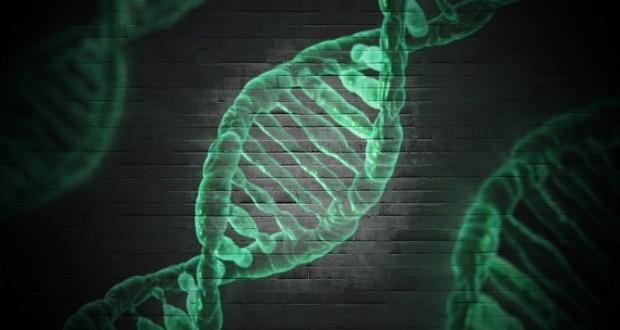 Gene deletion